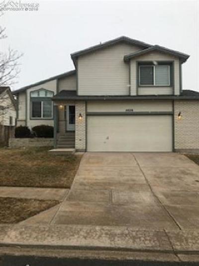 Rental For Rent: 5929 Pioneer Mesa Drive
