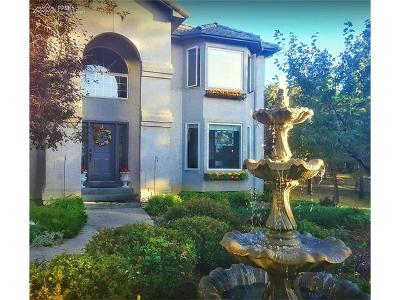 Monument Single Family Home For Sale: 19075 Merry Men Circle