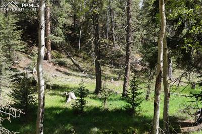 Divide Residential Lots & Land For Sale: 1210 E Bison Creek Trail