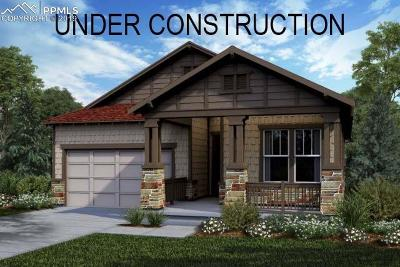 Castle Rock Single Family Home For Sale: 4210 Forever Circle