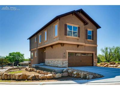 El Paso County Single Family Home For Sale: 811 Redemption Point