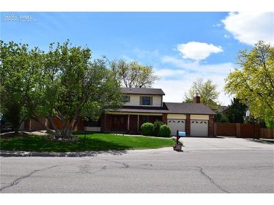 Single Family Home For Sale: 4 Ridgeweed Court