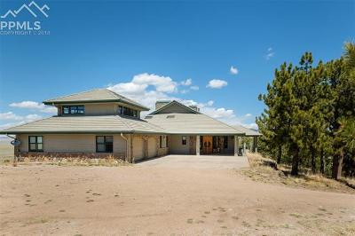 Single Family Home For Sale: 5681 County 59 Road
