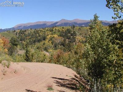 Cripple Creek Residential Lots & Land For Sale: Tbd Climax Drive