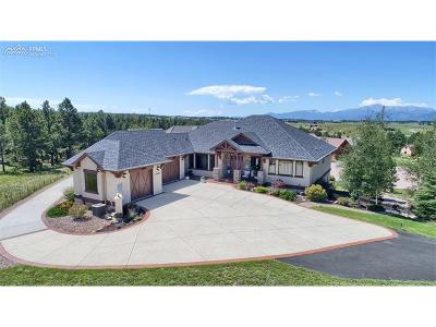 Single Family Home For Sale: 17880 Pioneer Crossing