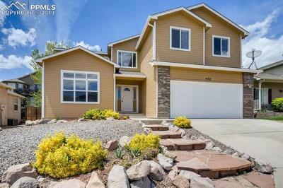 Colorado Springs Single Family Home For Sale: 432 Silver Mine Drive
