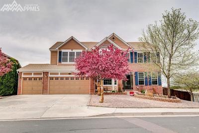 Colorado Springs Single Family Home For Sale: 5550 Rock Vista Lane