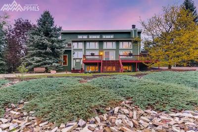 Colorado Springs Single Family Home For Sale: 210 Desert Inn Way