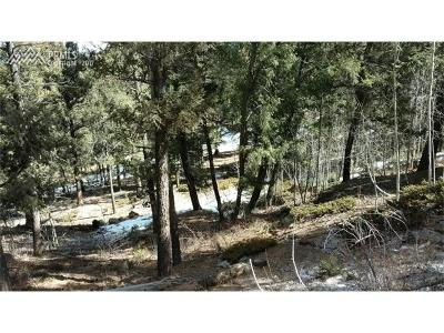 Lake George Residential Lots & Land For Sale: 344 Pine Drive