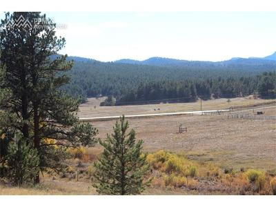Residential Lots & Land Sold: 157 W Highway 24 Highway