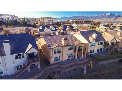 Colorado Springs Condo/Townhouse For Sale: 2468 Pine Valley View