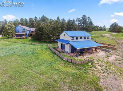 Colorado Springs Farm For Sale: 18140 Walker Court