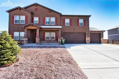 Single Family Home For Sale: 10978 Middlegate Court
