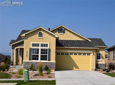 Colorado Springs Single Family Home For Sale: 9104 Tutt Boulevard