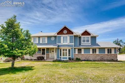 Colorado Springs Single Family Home For Sale: 5209 Brady Road