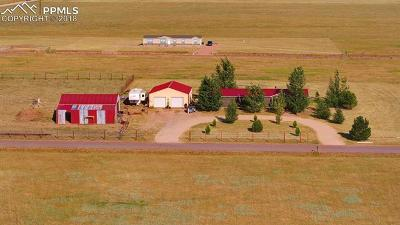 Calhan Single Family Home For Sale: 1391 Buffalo Run Road