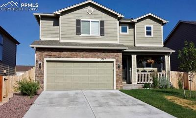 Colorado Springs Single Family Home For Sale: 3767 Reindeer Circle