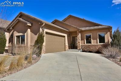 Colorado Springs Single Family Home For Sale: 2390 Mesa Crest Grove
