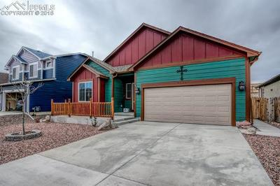 Colorado Springs Single Family Home For Sale: 7534 Dutch Loop
