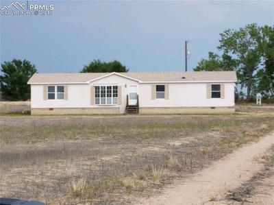 Pueblo Single Family Home For Sale: 620 Avondale Boulevard