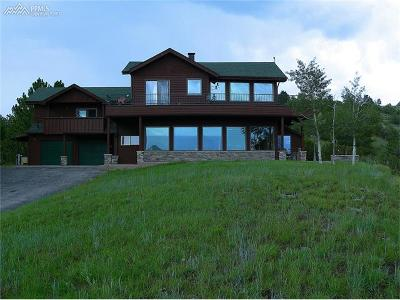 Westcliffe CO Single Family Home For Sale: $750,000