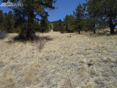 Cripple Creek Residential Lots & Land For Sale: 1055 Copper Mountain Drive