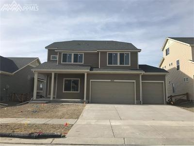 Single Family Home For Sale: 8651 Tranquil Knoll Lane