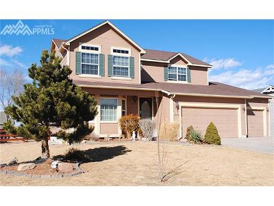 Colorado Springs Single Family Home For Sale: 5114 Barnstormers Avenue