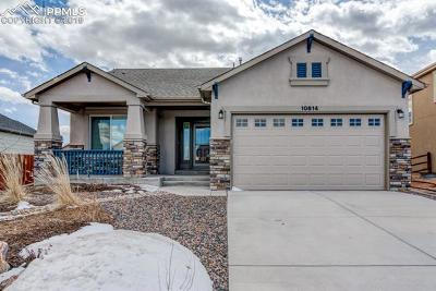 Single Family Home For Sale: 10614 Mt Emerald Drive