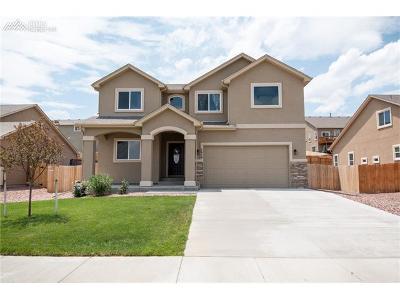 Colorado Springs Single Family Home For Sale: 7959 Dutch Loop