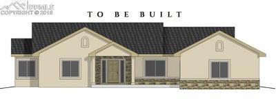 Peyton Single Family Home For Sale: 8125 Aerostar Drive