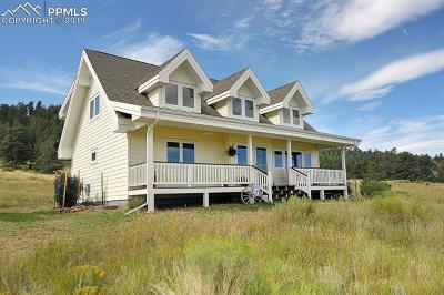 Single Family Home For Sale: 235 Centennial Circle
