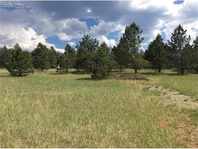 Residential Lots & Land For Sale: 70 Andesite Lane