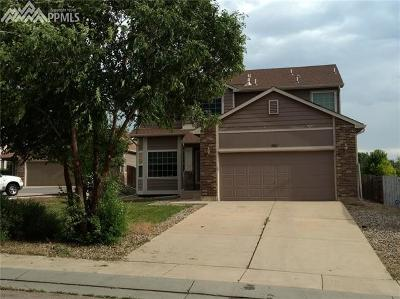 Colorado Springs Single Family Home For Sale: 7111 Lolo Drive