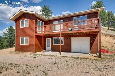 Florissant Single Family Home For Sale: 134 Hillside Drive