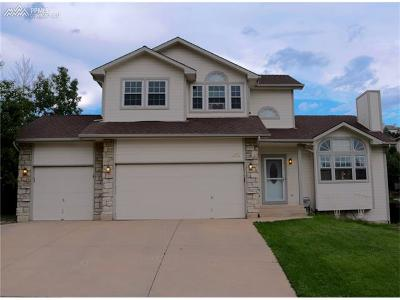 Single Family Home For Sale: 1870 Smoke Ridge Drive