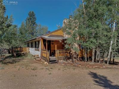 Cripple Creek Single Family Home For Sale: 9757 S Highway 67 Highway