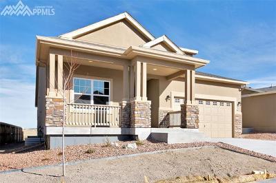 Shiloh Mesa, Shiloh Single Family Home For Sale: 7936 Callendale Drive