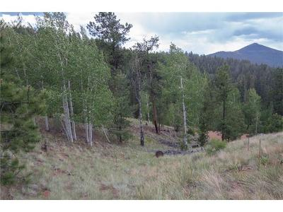Cripple Creek Residential Lots & Land For Sale: 255 Idlewild Drive