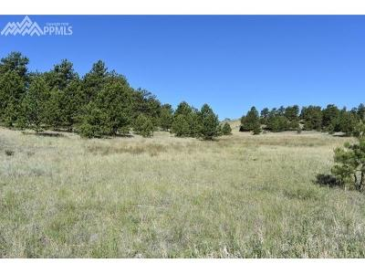Guffey Residential Lots & Land For Sale: 7201 County 71