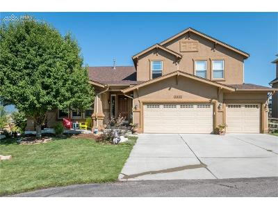 Colorado Springs Single Family Home For Sale: 1411 Fieldwood Court