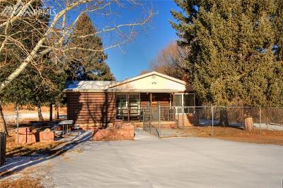 Cascade Single Family Home For Sale: 9055 Picabo Lane