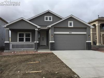 The Glen At Widefield Single Family Home For Sale: 7600 Peachleaf Drive