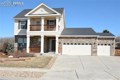 Colorado Springs Single Family Home For Sale: 822 Coyote Willow Drive