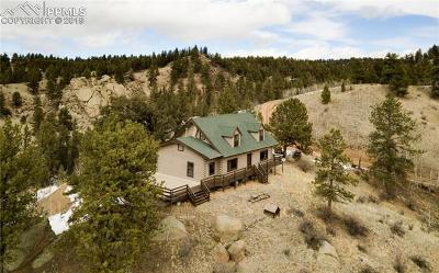 Single Family Home For Sale: 4567 W Highway 24
