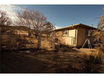 Farm For Sale: 18110 N Peyton Highway