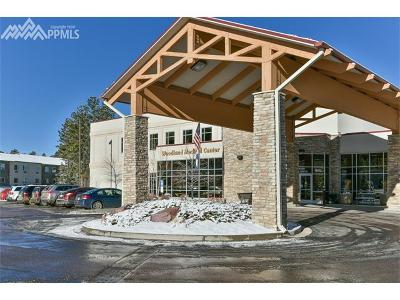 Commercial For Sale: 16222 E Highway 24 Highway #130