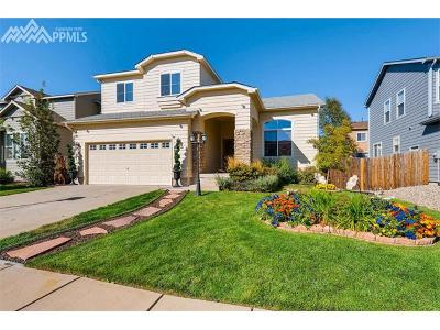 Colorado Springs Single Family Home For Sale: 6876 Cool Spring Way