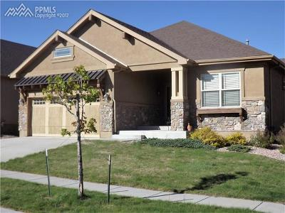 Colorado Springs Single Family Home For Sale: 9291 Sky King Drive