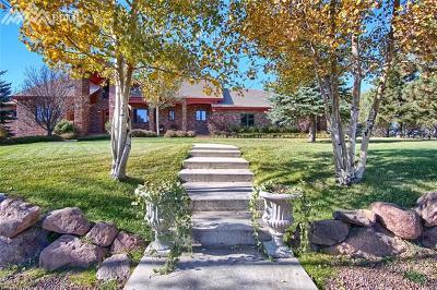 Colorado Springs Single Family Home For Sale: 5975 Hodgen Road